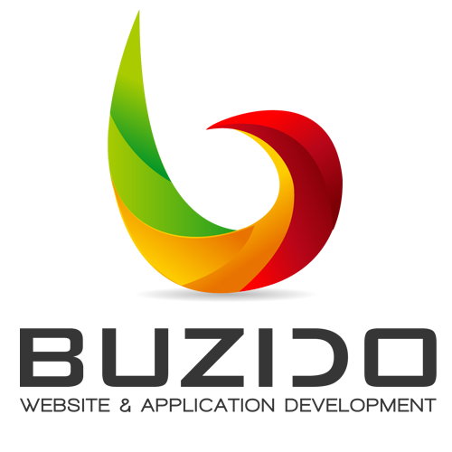 buzido website design